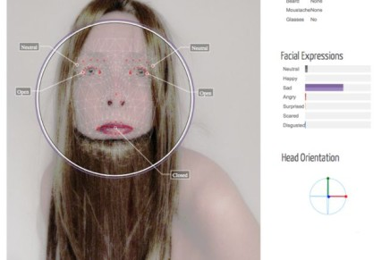 FACEREADER: analyzing Self Portrait #066